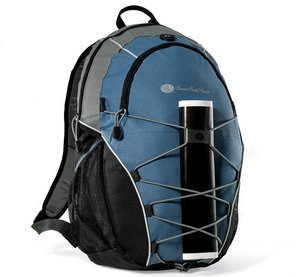 Expedition Computer Laptop Backpack - Light Blue/ Black