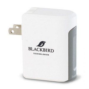 Brookstone Optima Dual USB Wall Charger White/Gray