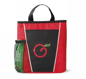 Vibrant Lunch Cooler Red